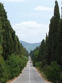 200px-viale_dei_cipressi_bolgheri_castagneto_carducci